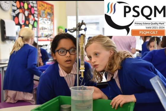 Primary Science Quality Mark Award